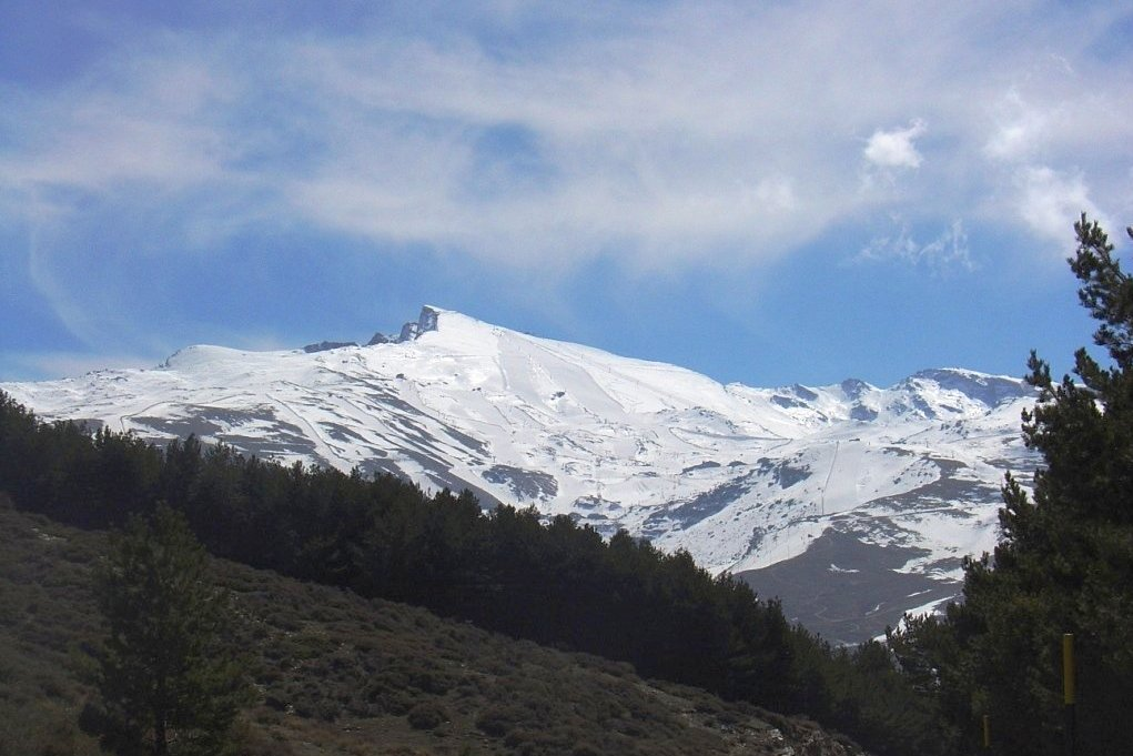 Sierra Nevada Infinito Ebikes
